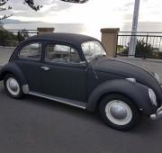 Volkwagen Beetle